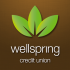Wellspring FCU converts to new tech