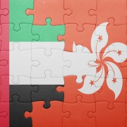 puzzle with the national flag of hong kong and united arab emirates