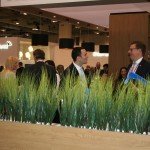 In the wild, Sibos delegates show off some of their strange mating rituals