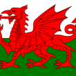 New core system selection in Wales – who will clinch the deal?