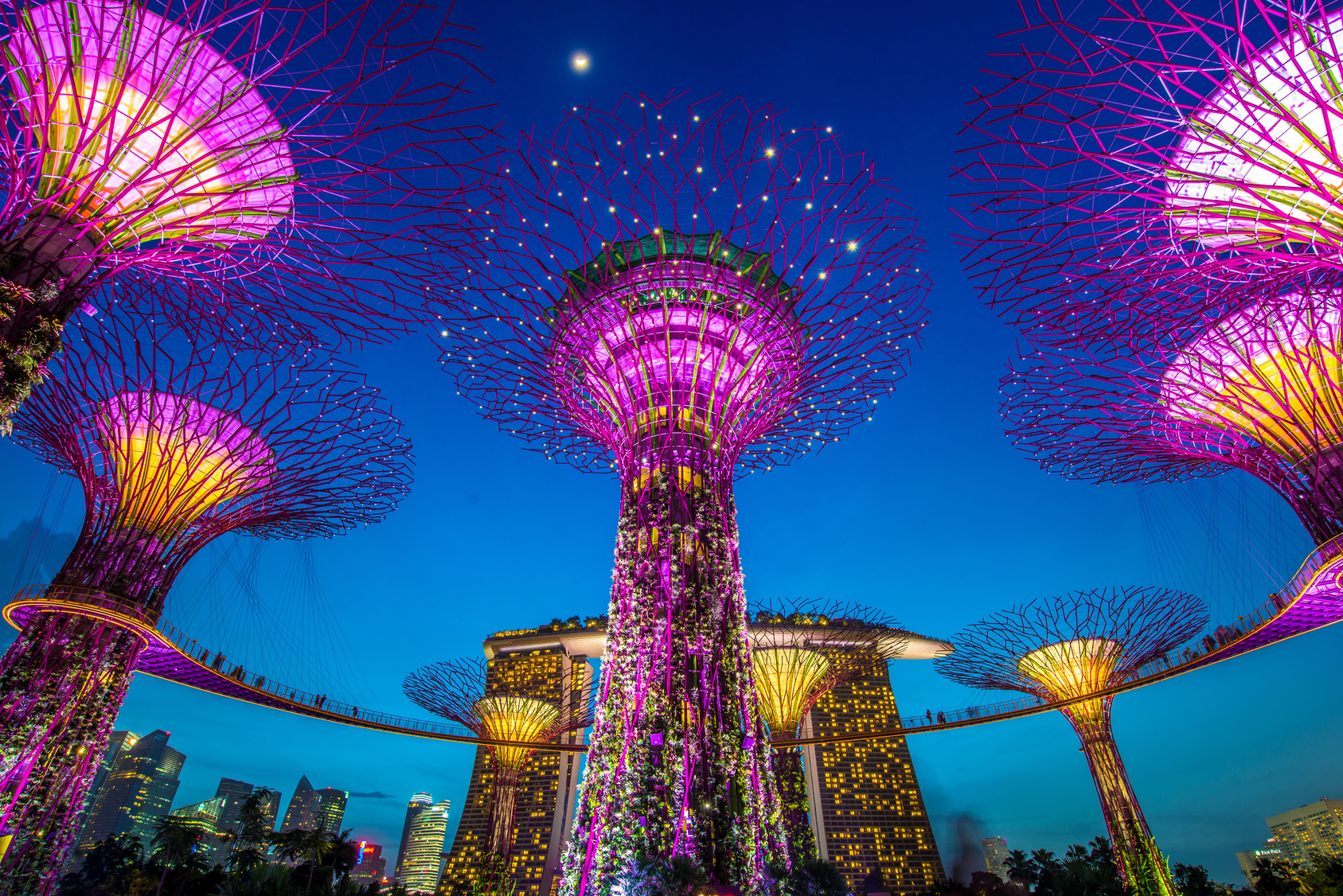 Fintech keeping Singapore colourful